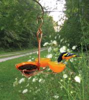 Songbird Essentials Copper Single Cup Fruit and Jelly Oriole Bird Feeder