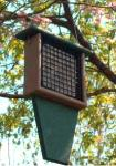 Rubicon Suet Feeder with Tail Prop Bird Feeder - Hunter Green