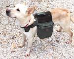 Eco Dog Backpack - Medium 20lb - 50lb Dog